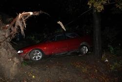 Ураган на Львівщині